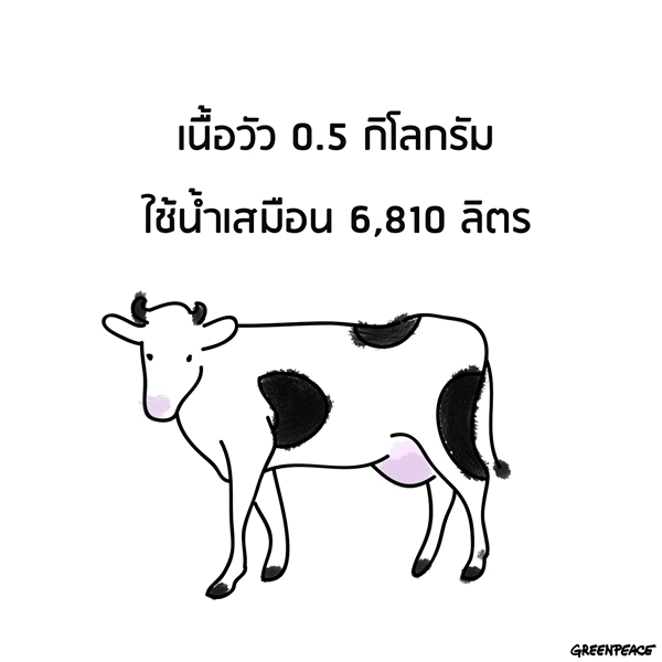 135110_240278