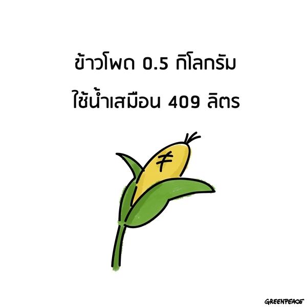 135112_240274